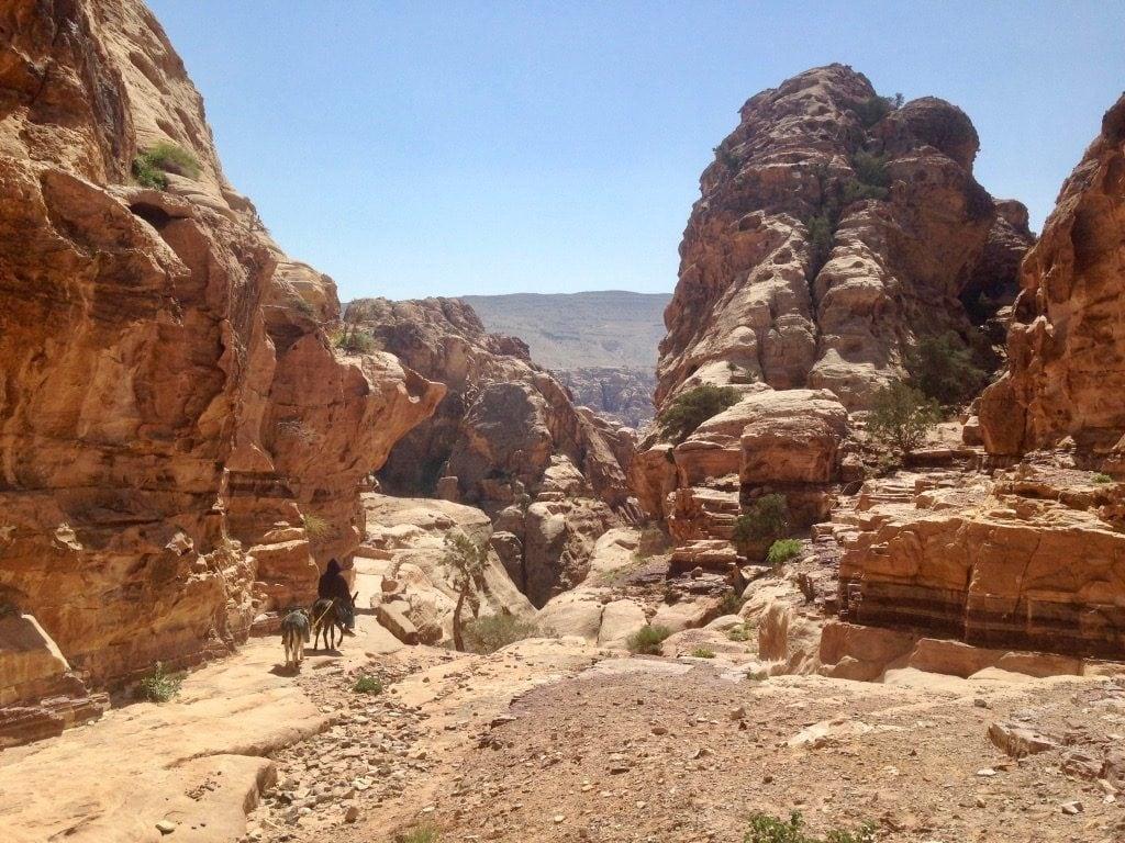 Asini sul sentiero che porta al Monastero di Petra