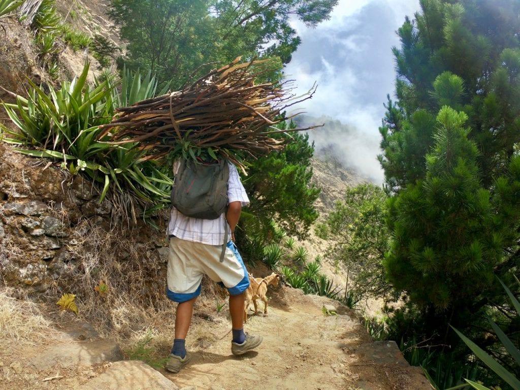 Un montanaro con in spalla della legna e una capra scendono da un sentiero