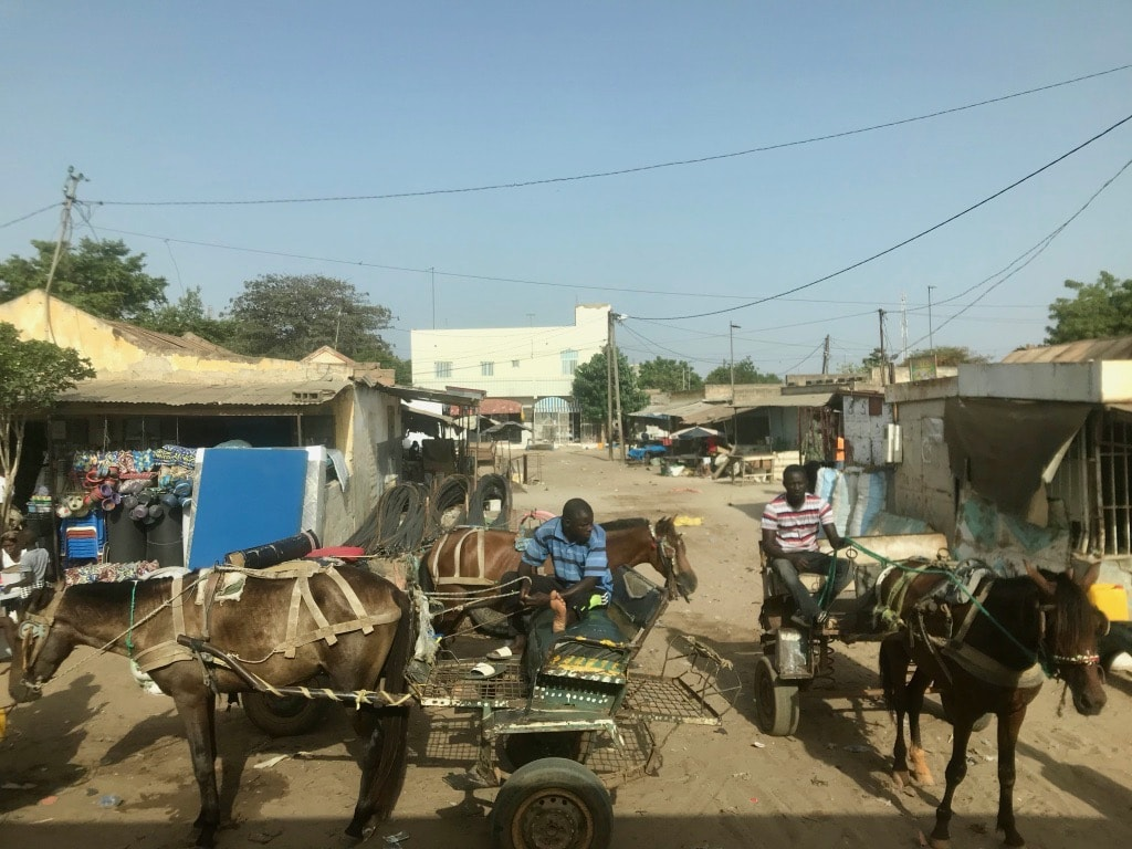Dei carretti trainati da cavalli sulle strade del Senegal