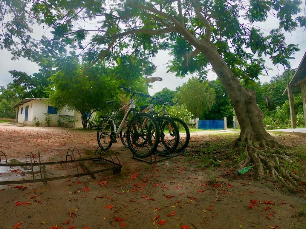 La sede di Casamance VTT con tre biciclette in primo piano