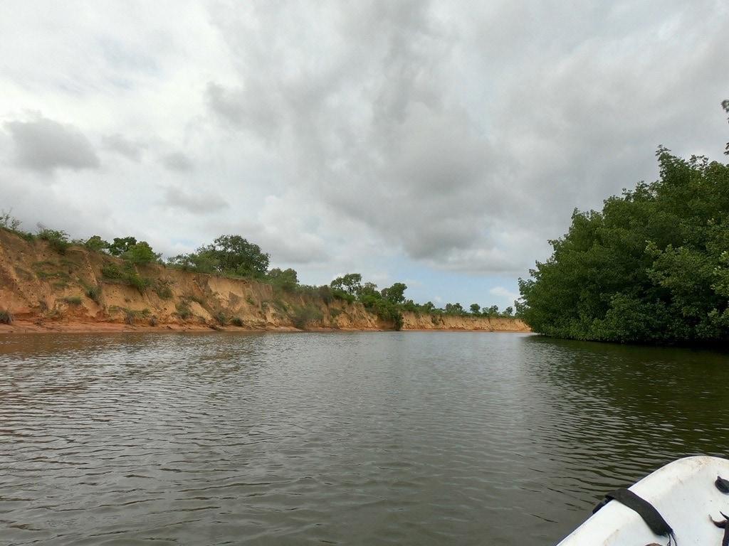 Il fiume Casamance visto dal kayak, con una scogliera a sinistra e le mangrovie a destra