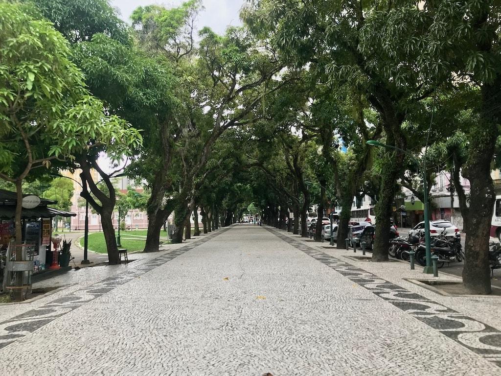 Il viale alberato di Praça da Repubblica