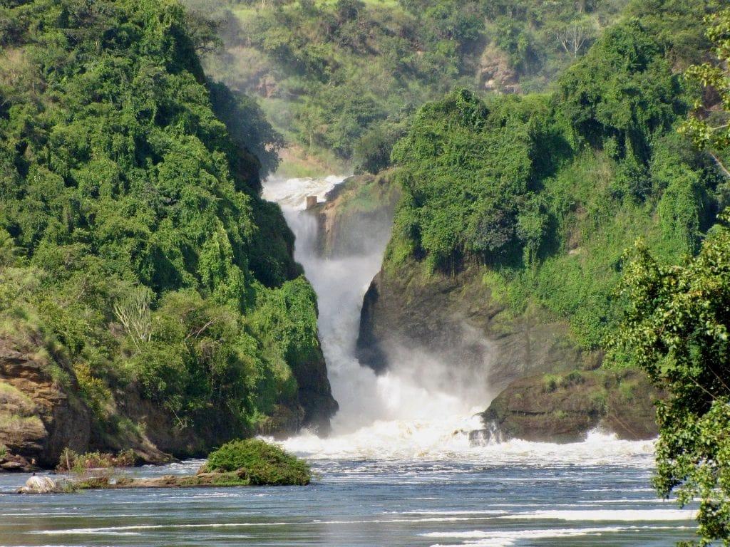 parchi uganda murchison falls