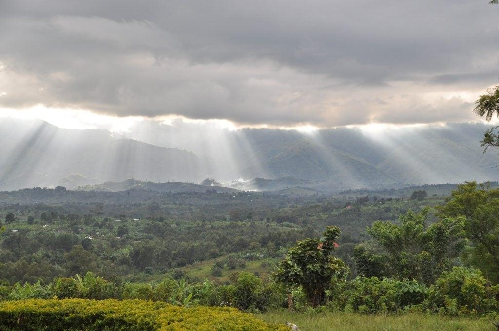 Uganda viaggio Rwenzori