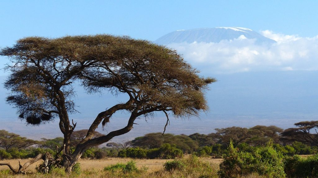 arusha national park safari tanzania