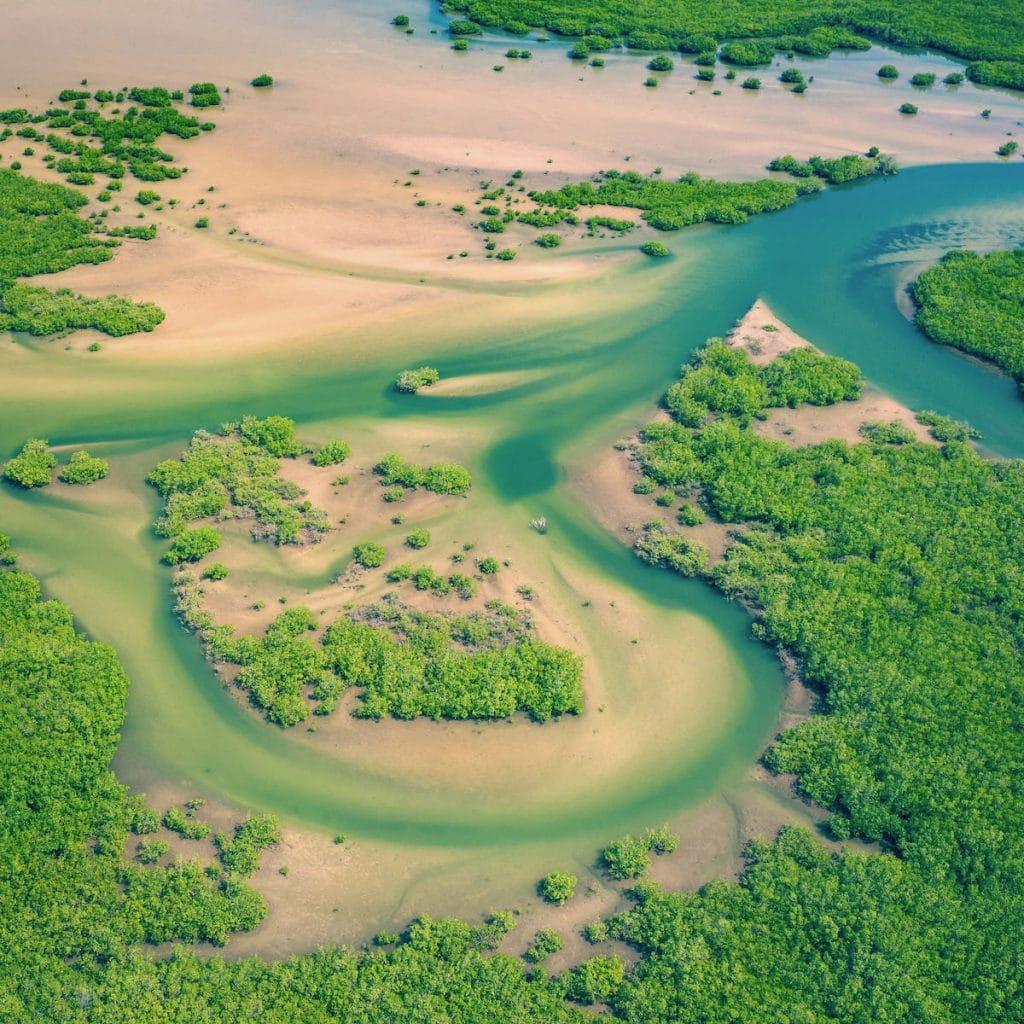 delta del sine saloum in senegal visto dall'alto